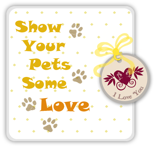Show Your Pets Some Love